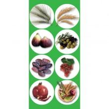 חבילת מדבקות שבעת המינים