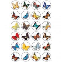 חבילת מדבקות פרפרים קטנים