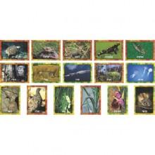 ערכת תמונות תחפושות בטבע