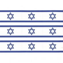 חבילת מדבקות דגל המדינה