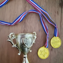 מדליות וגביעים