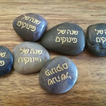 אבן ברכה- שנה של פינוקים