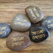 אבן ברכה- שנה של ריגושים
