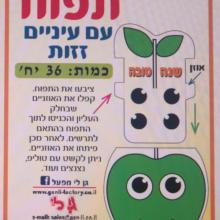 36 איגרות תפוח מזיז עיניים